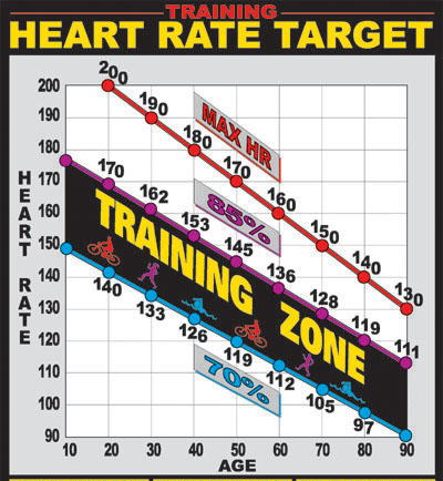 Best Training Heart Rate Online Collages Mba Masters Business